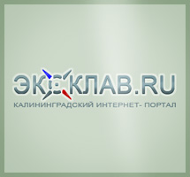 Дизайн информационного портала Exclav